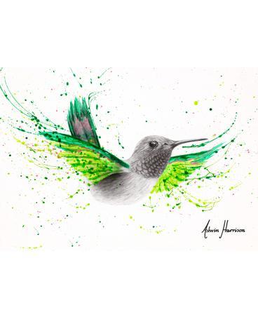 River City Hummingbird