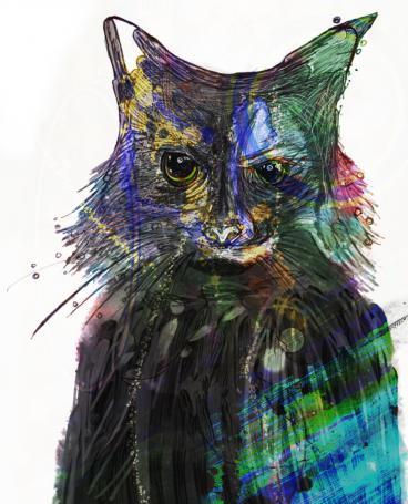 Mr Miau