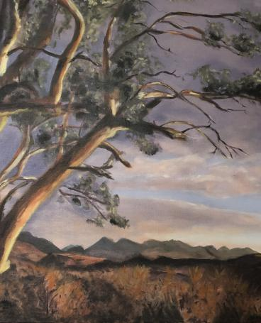 Flinders-Ranges-Nationalpark