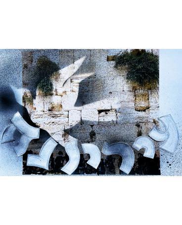 State of a Dove (Jerusalem)